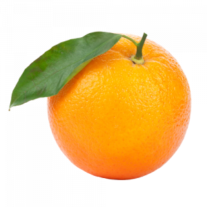 orange-hd-png-download-png-image-orange-png-clipart-744-removebg-preview